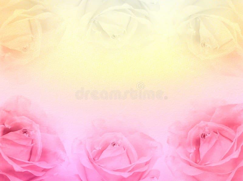 Rosa- und Gelbrosenpastellhintergrund stockfotografie