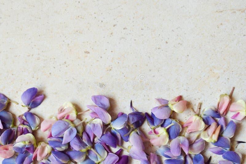 Rosa und purpurrote lupine Blumen auf Marmorhintergrund Geburtstag, Muttertag, Valentinstag, am 8. M?rz, Hochzeitskarte oder invi lizenzfreie stockfotos