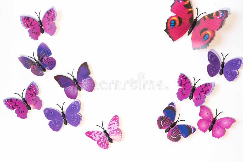 Rosa und violetter Schmetterling lokalisiert auf weißem Hintergrund stock abbildung