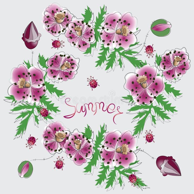 Rosa vallmo och ordet SOMMAR vektor illustrationer