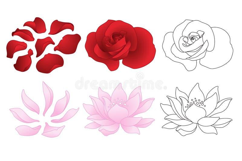 Rosa vektor och lotusblomma royaltyfri illustrationer