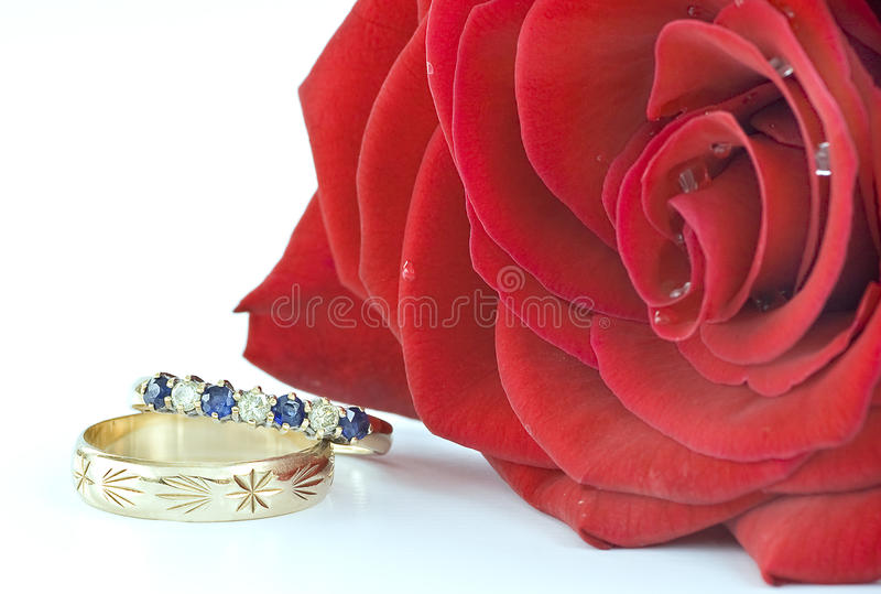 Download Rosa vermelha foto de stock. Imagem de amantes, flor - 12805580