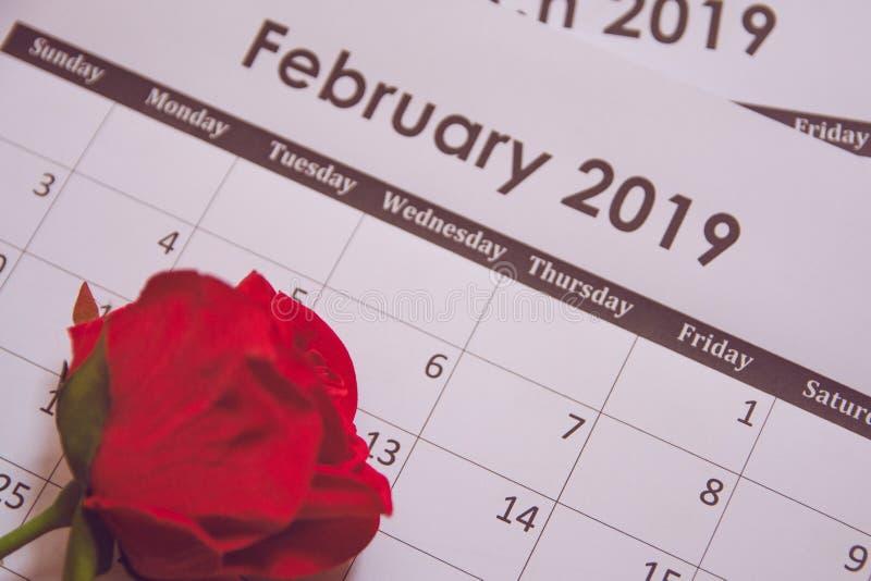 Rosa vermelha Rosa vermelha calendário página o 14 de fevereiro com espaço da cópia imagem de stock royalty free