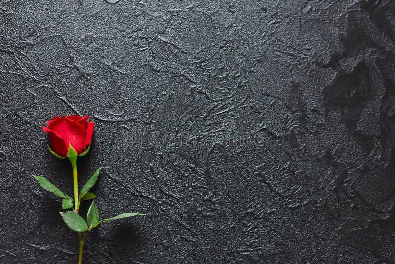 Rosa vermelha em um fundo preto, pedra Um cartão dos pêsames Espaço vazio para emocional, citações ou provérbios A vista da parte imagem de stock royalty free