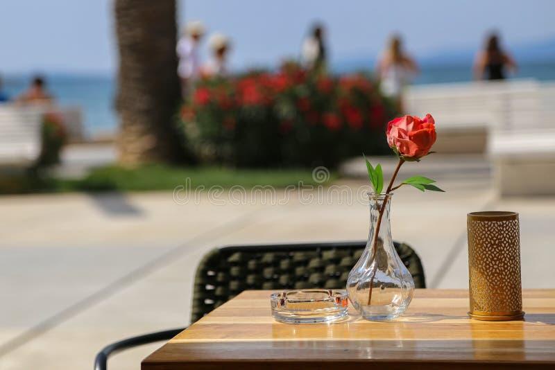 A rosa vermelha está em um vaso de vidro fotografia de stock royalty free