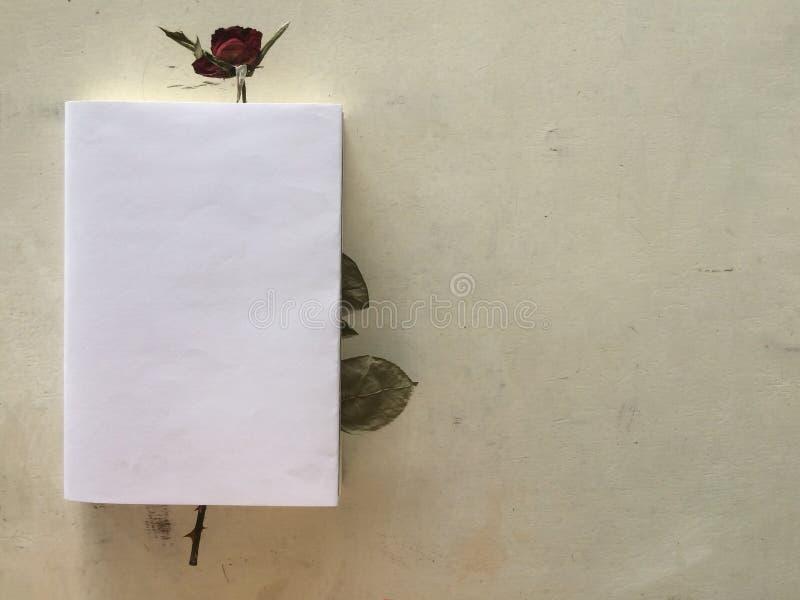 A rosa vermelha secada cobre no livro imagem de stock