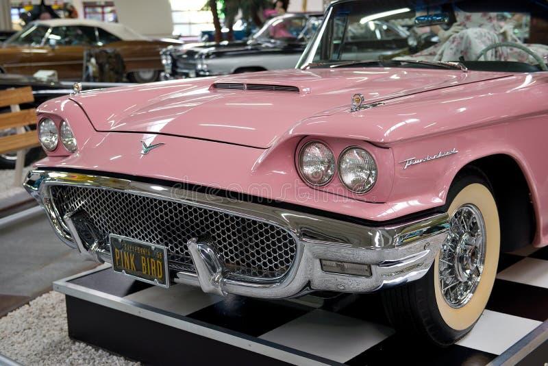 rosa vogel amerikanischer traum motor museum sinsheim redaktionelles stockbild bild von. Black Bedroom Furniture Sets. Home Design Ideas