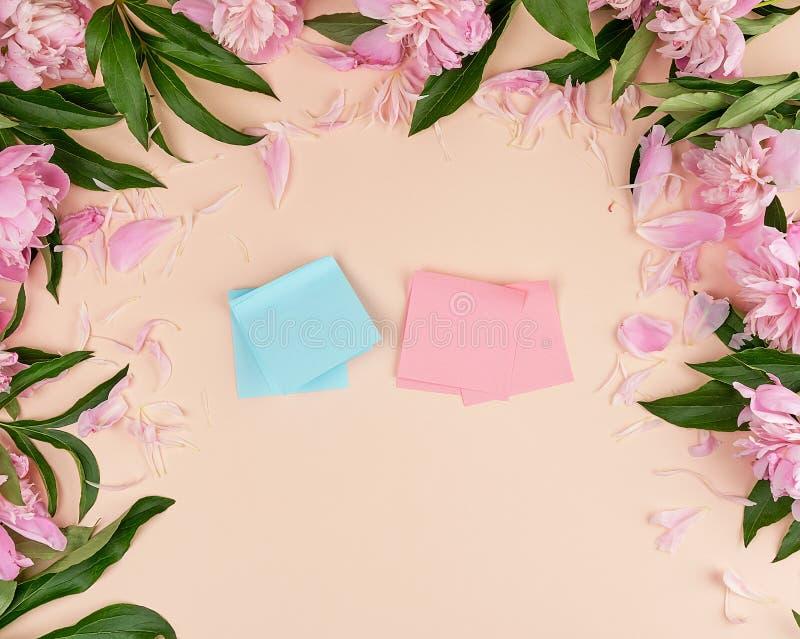 rosa vuoto ed autoadesivi di carta blu su un fondo della pesca immagini stock libere da diritti