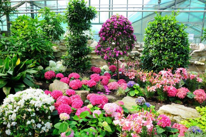 Rosa, Weiße Und Blaue Blumen In Palmen Garten, Frankfurt Am Main ...