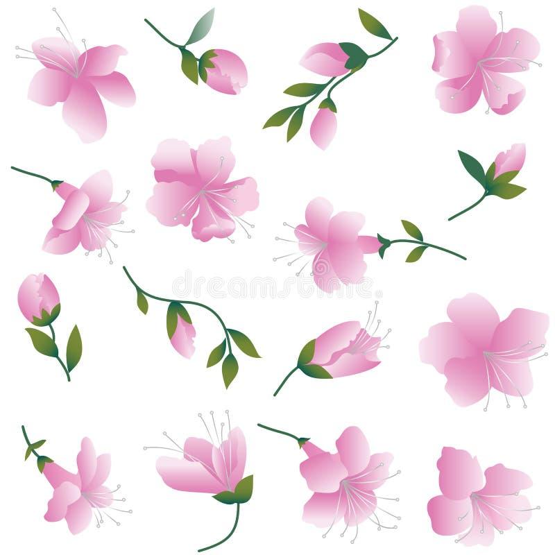 rosa white för blommor royaltyfri illustrationer