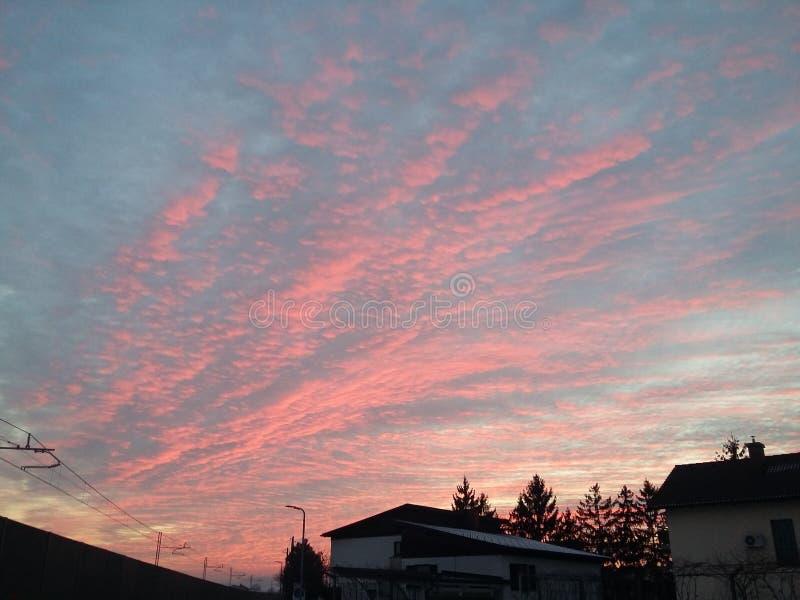 Rosa Wolken lizenzfreie stockbilder