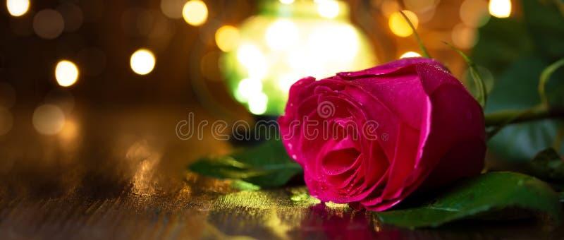 Rosa y linterna rojas con las luces en una tabla de madera fotografía de archivo libre de regalías