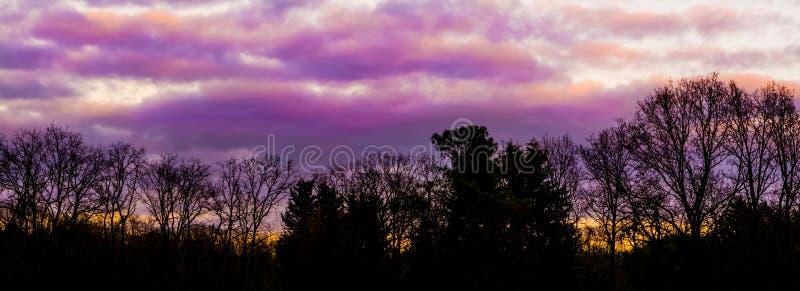 Rosa y nubes estratosféricas polares púrpuras en un paisaje del bosque, un fenómeno del tiempo que ocurre raramente en invierno,  fotos de archivo