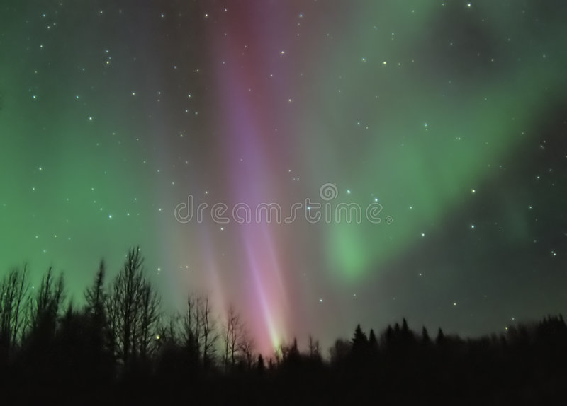 Rosafarbene Aurora Borealis lizenzfreies stockfoto