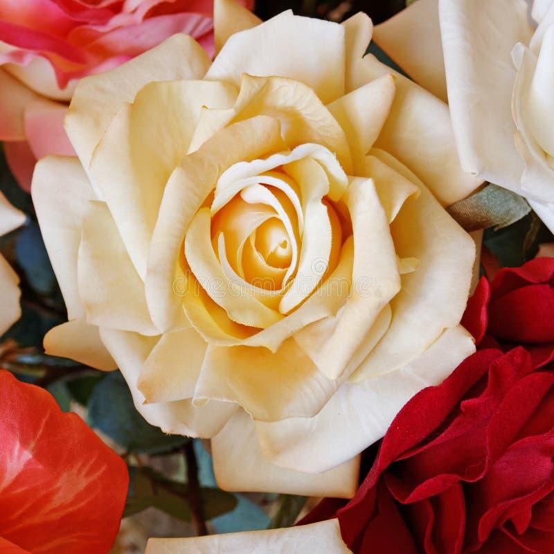 Rosafarbene Blume der blassen weißen Fälschung stockbilder