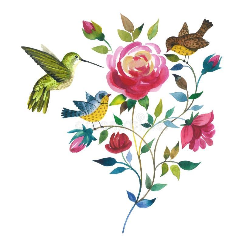 Rosafarbene Blume des Wildflower mit Vogel colibri in einer Aquarellart lokalisiert lizenzfreie abbildung