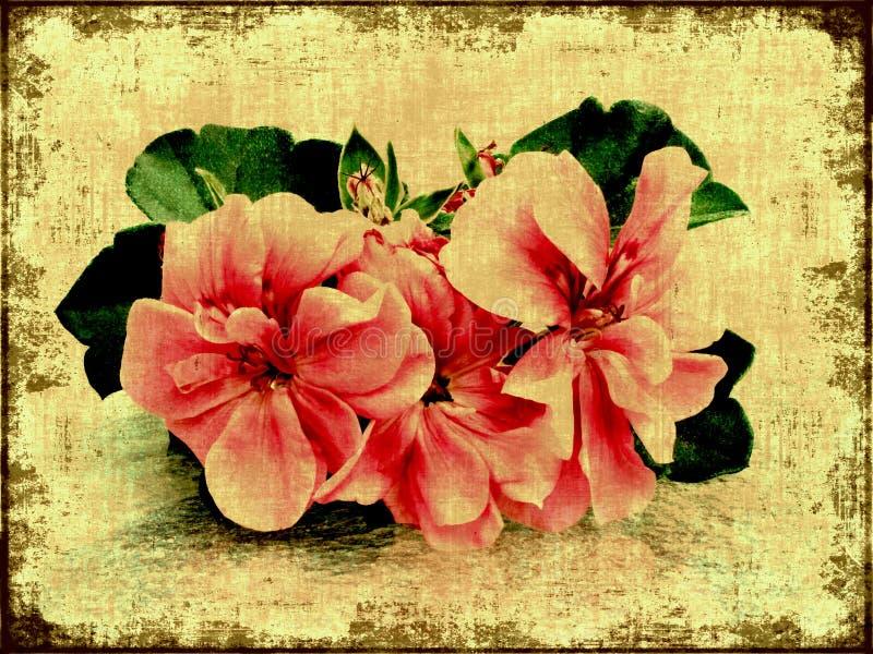 Rosafarbene Blumen der Weinlese stock abbildung