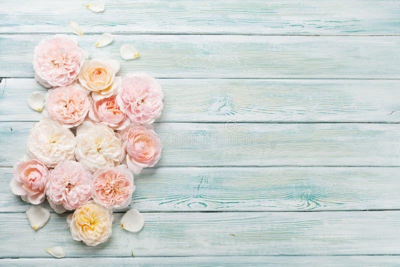 Rosafarbene Blumen des Gartens auf hölzernem Hintergrund stockbilder