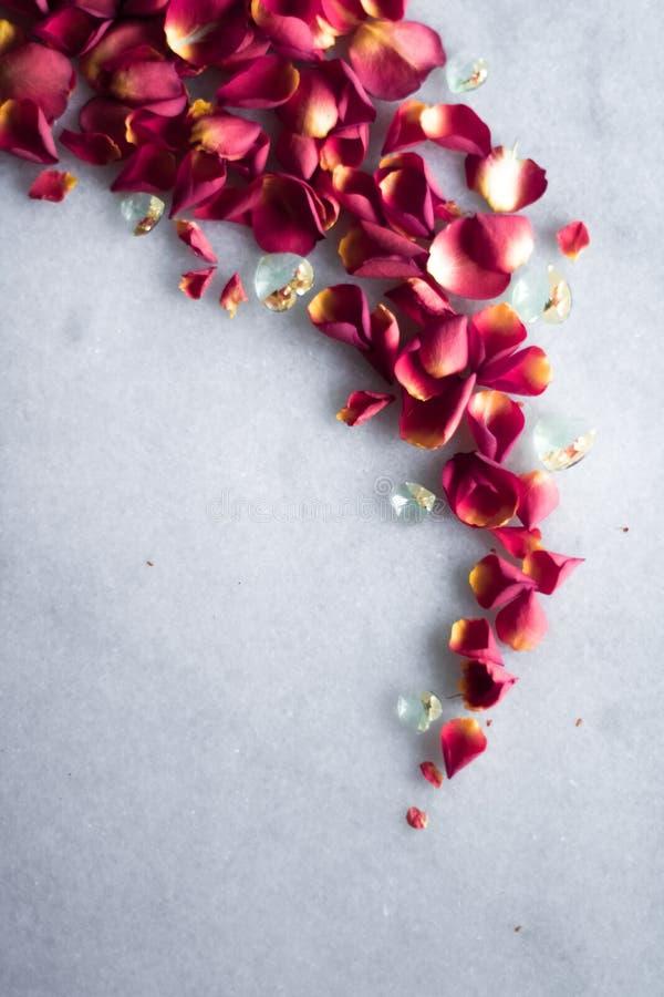 rosafarbene Blumenblätter auf Marmorierungflatlay - Hochzeit, Feiertag und Blumenhintergrund angeredetes Konzept lizenzfreies stockfoto