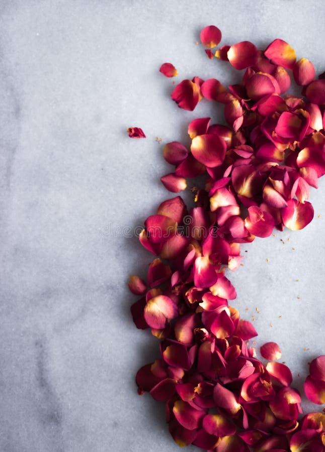 rosafarbene Blumenblätter auf Marmorierungflatlay - Hochzeit, Feiertag und Blumenhintergrund angeredetes Konzept lizenzfreie stockfotografie