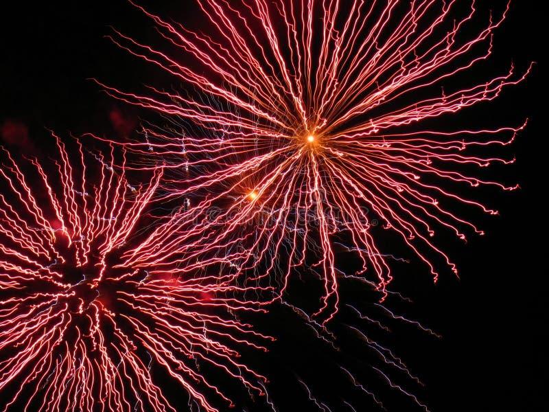 Rosafarbene Feuerwerke lizenzfreie stockfotos