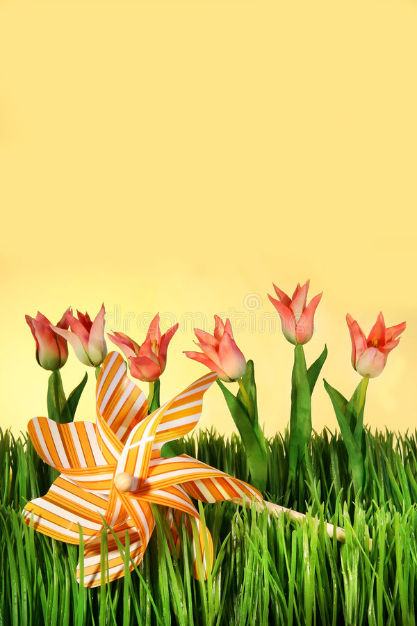 Rosafarbene Frühlingstulpen stockfoto