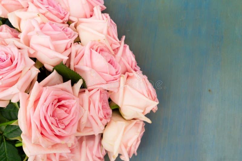 Rosafarbene frische Rosen stockbild