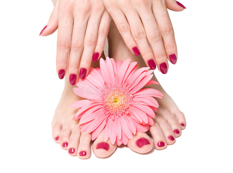 Rosafarbene Maniküre und pedicure mit einer Blume stockbild