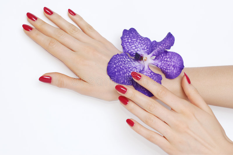 Rosafarbene Maniküre und purpurrote Orchidee stockfotografie