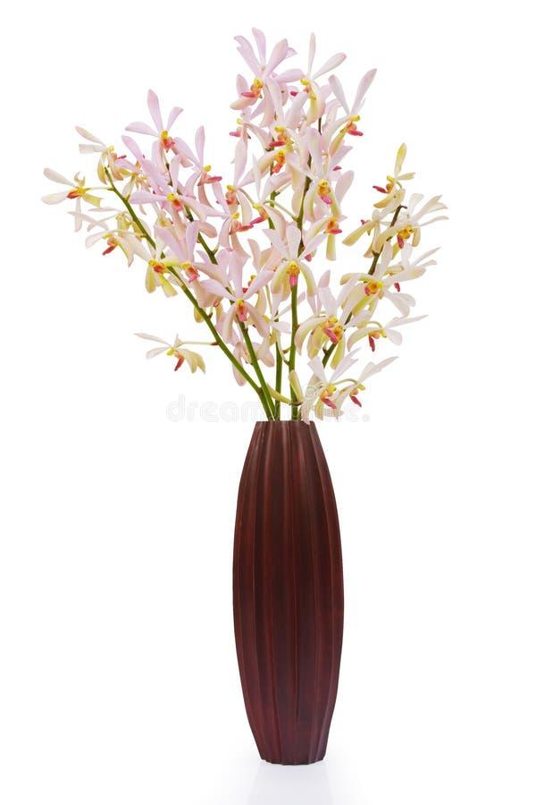 Rosafarbene Orchidee im hölzernen Vase lizenzfreie stockfotos