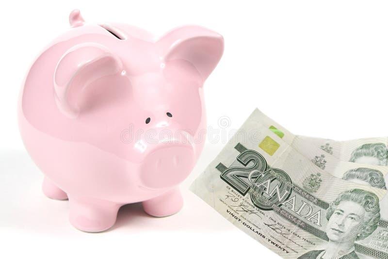 Rosafarbene Piggy Querneigung mit Geld stockbild