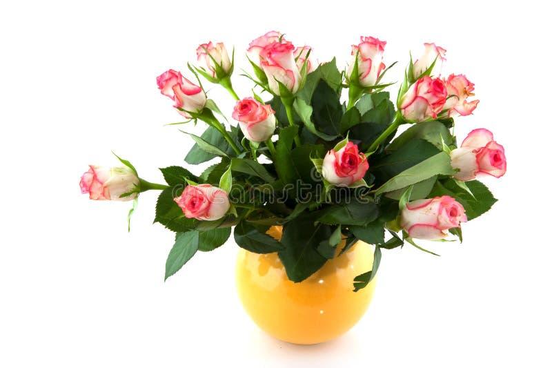 Rosafarbene Rosen im Vase lizenzfreie stockfotos