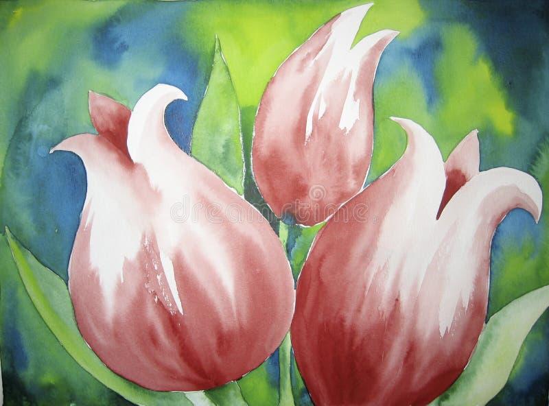 Rosafarbene Tulpen vektor abbildung