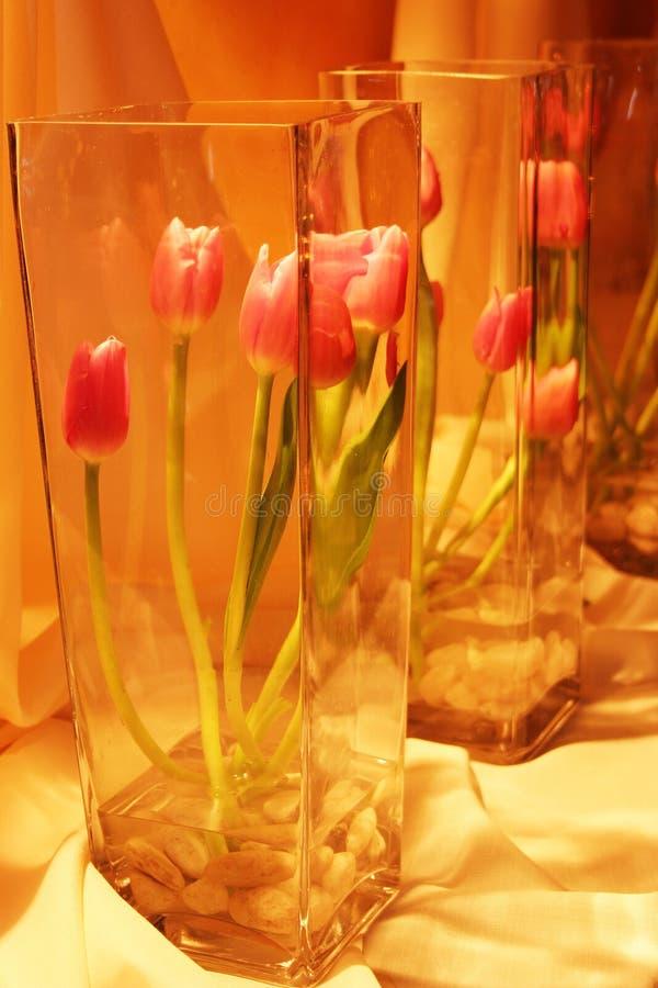 Rosafarbene Tulpen im Glasvase stockfotografie