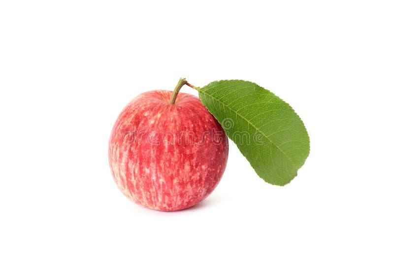 Rosafarbener Apfel und Blatt auf einem Weiß. lizenzfreies stockfoto