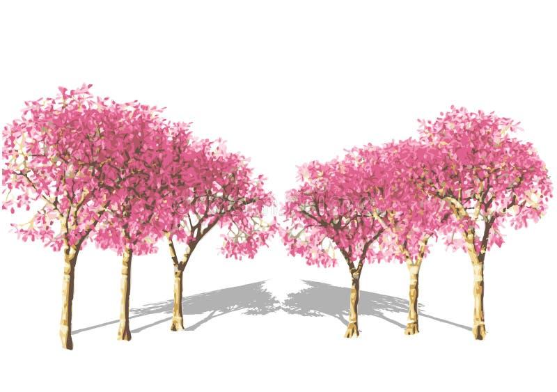Rosafarbener Baum im Frühjahr. stock abbildung