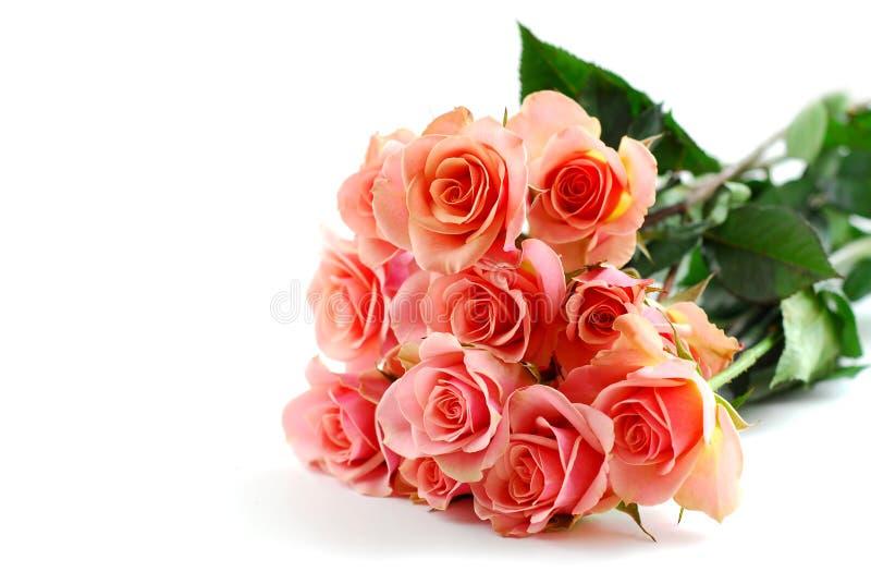 Rosafarbener Blumenstrauß des Rosas auf Weiß stockfotos