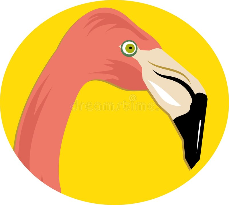 Download Rosafarbener Flamingo vektor abbildung. Illustration von tiere - 47481