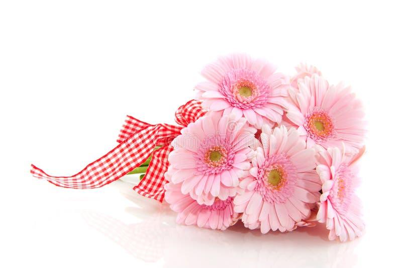 Rosafarbener Gerber Blumenstrauß stockfoto