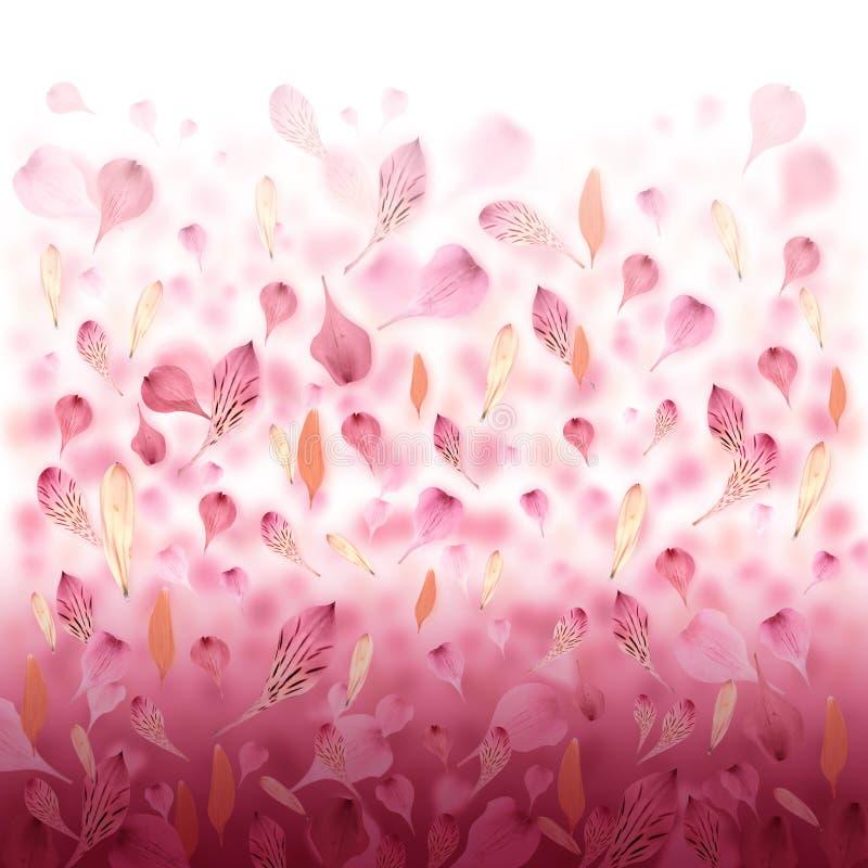 Rosafarbener Liebes-Blumen-Valentinsgruß-Hintergrund lizenzfreie abbildung