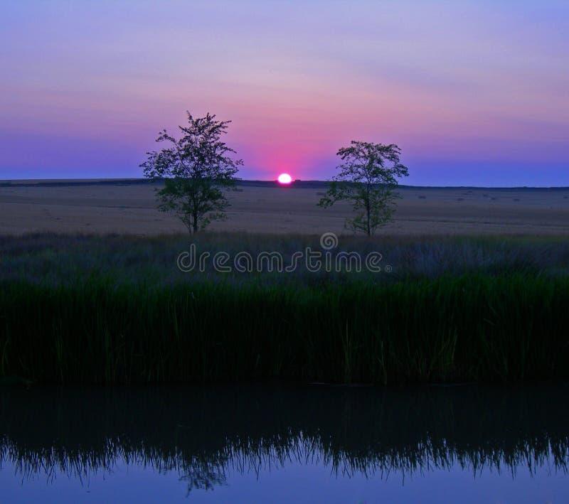 Rosafarbener Sonnenaufgang stockfotografie