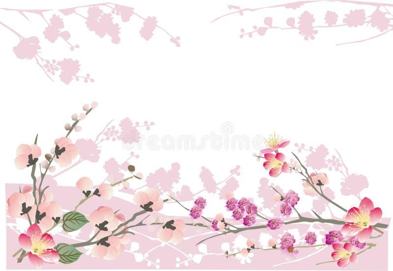 Rosafarbenes Sakura-Feld auf Weiß stock abbildung