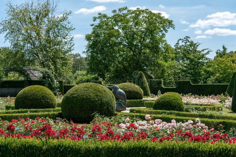 Rosarium formal com arbustos aparados foto de stock