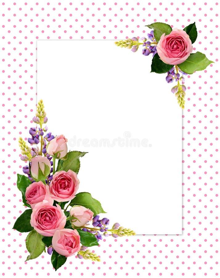Rosarose blüht und knospt Eckvorbereitungen und eine Karte lizenzfreie abbildung