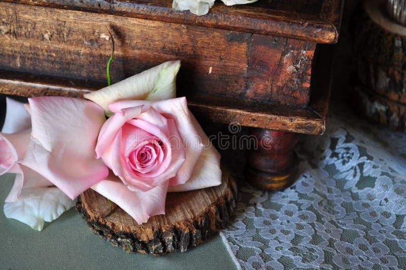 Rosarose und Antikenkasten stockfotos