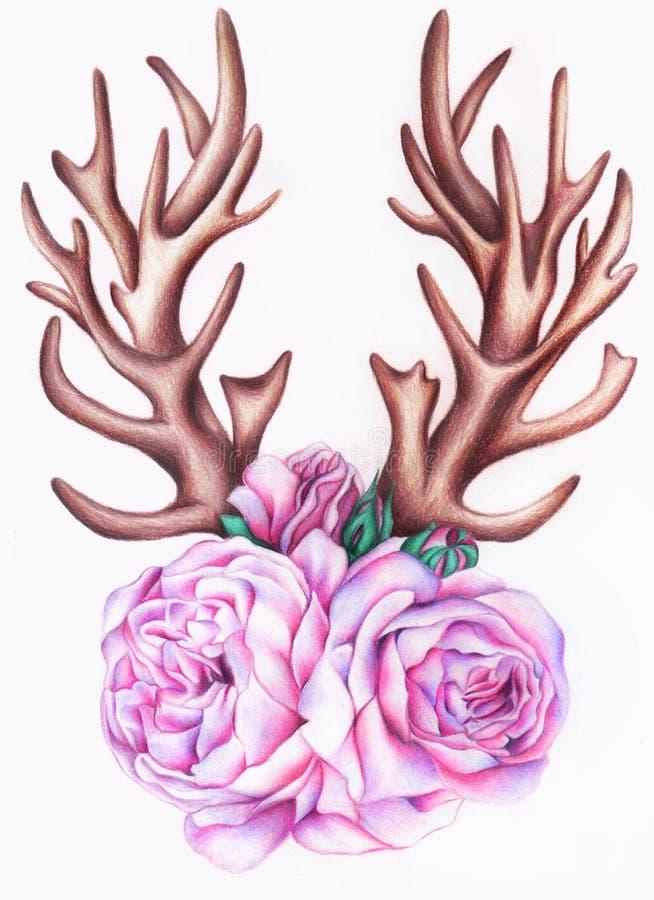 rosas ilustração do vetor