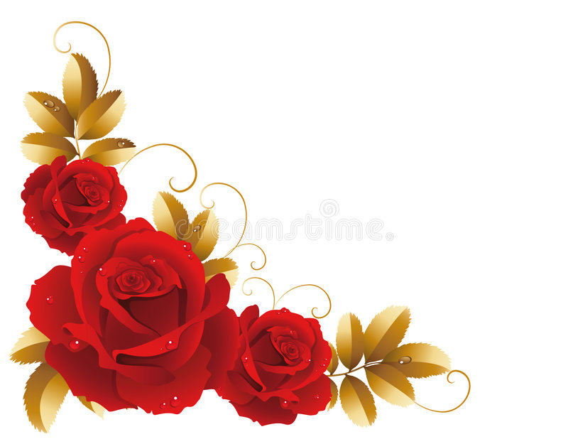 Rosas ilustração royalty free