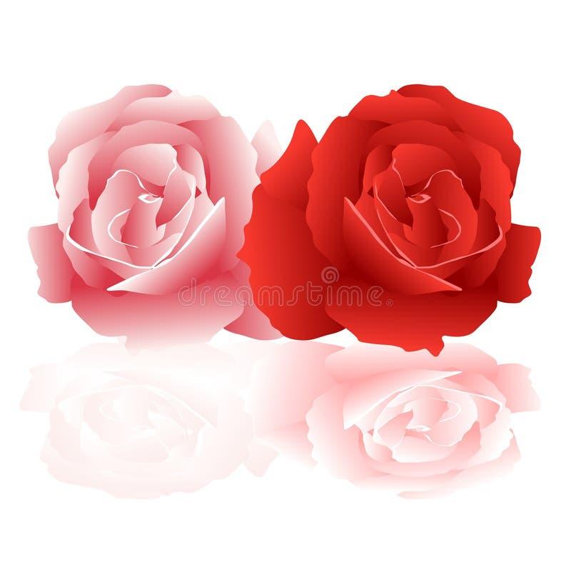 Rosas libre illustration