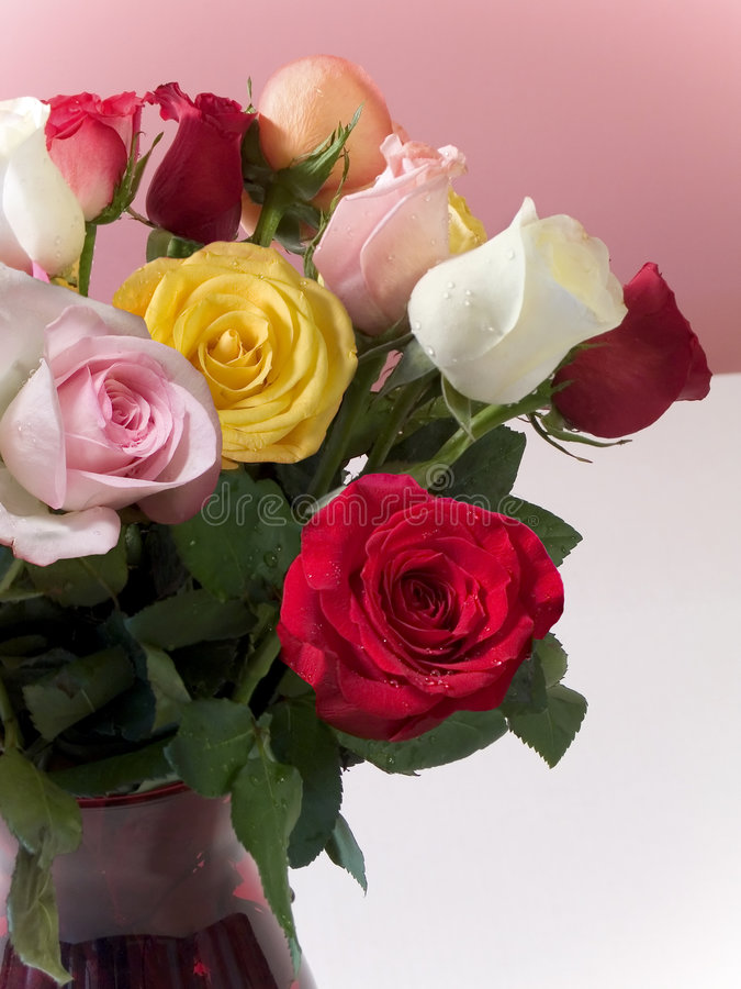 Download Rosas imagem de stock. Imagem de lighting, fundo, consideravelmente - 535749