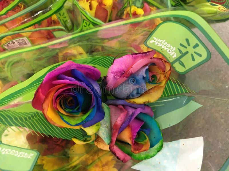 Download Rosas foto editorial. Imagen de esposa, ella, impresionante - 64203156